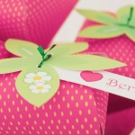 STRAWBERRY PARTY FAVOR BY PAPER GLITTER