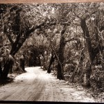 coral way back in the 1920's