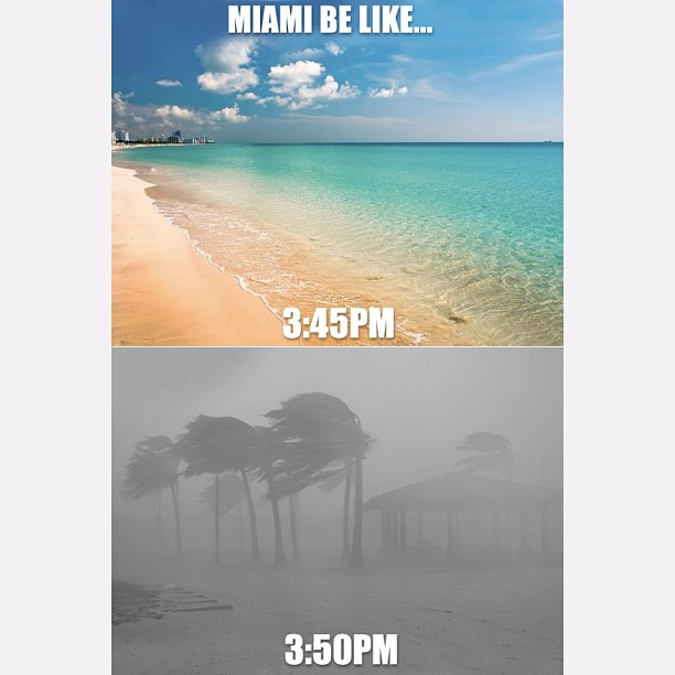 miami climate The sunshine state's economy depends on its pleasant climate, but florida's summer weather is extremely hot and humid with nearly daily thunderstorms.