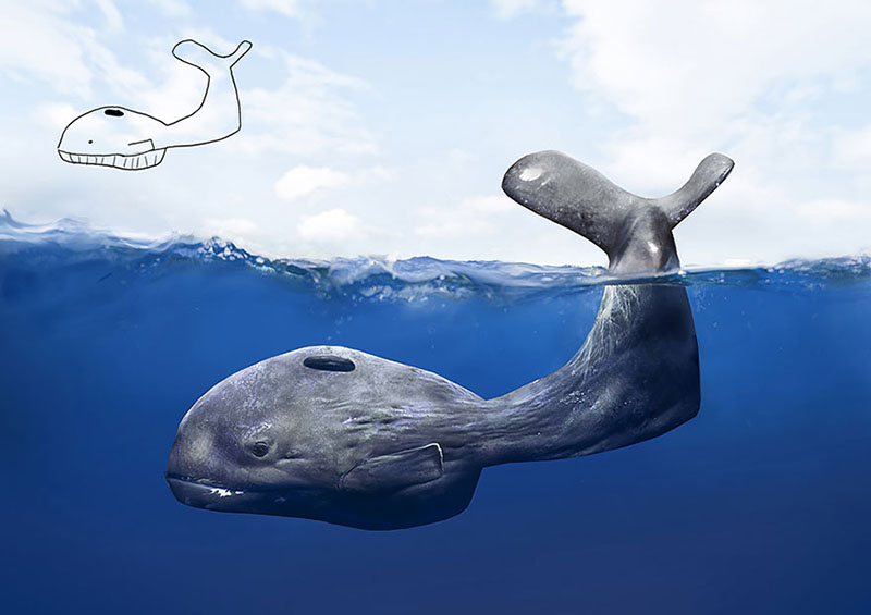 Whale Drawing Child vs Adult