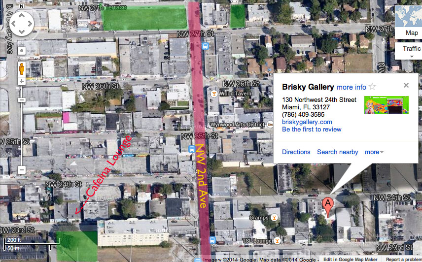 map parking in wynwood miami art walk