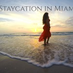 Staycation in Miami video