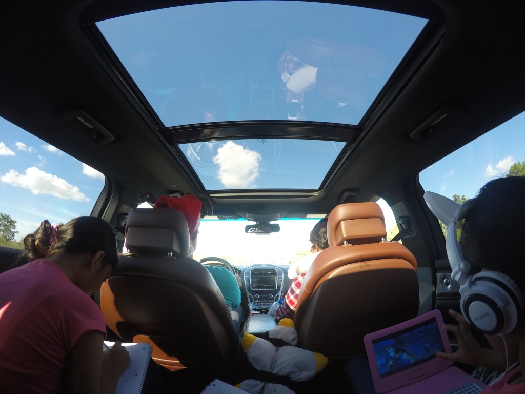 panoramic moon roof